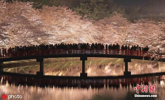 资料图:日本青森县弘前市弘前公园的樱花。图片来源:ICphoto 版权作品 请勿转载