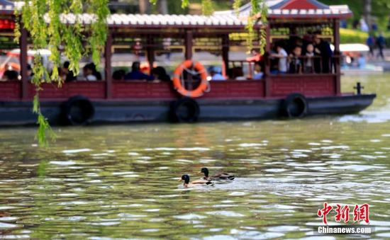 玉渊潭公园内花木色彩缤纷,景色迷人,游览舒适度高。中新社记者 杜洋 摄