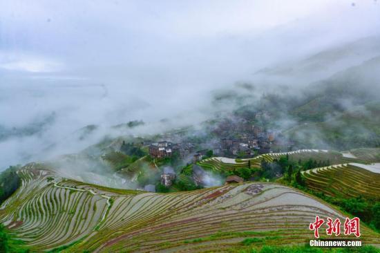 资料图:广西桂林市龙胜各族自治县龙脊梯田云雾景观。潘志祥 摄