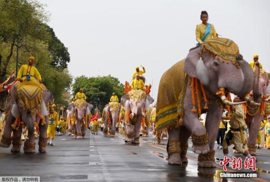 資料圖:當地時間2019年5月7日,泰國曼谷大皇宮附近,象夫騎著大象民眾一起游行,向泰國國王瑪哈·哇集拉隆功致敬。