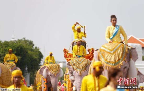 资料图:当地时间2019年5月7日,泰国曼谷大皇宫附近,象夫骑着大象民众一起游行庆祝,向泰国国王玛哈·哇集拉隆功致敬。