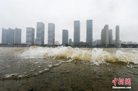 5月13日,受连日降雨影响,湘江长沙段水位涨至30.98米,较5月11日8时升高了0.53米,出现今年较高水位,已进入主汛期。图为湘江水淹没了长沙橘子洲部分台阶。杨华峰 摄