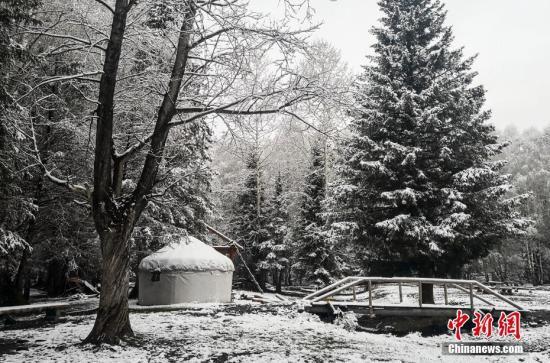 """5月15日,经过一夜的降雪,地处新疆阿勒泰山区的古老村落——禾木村,山间树木、河岸两边、图瓦木屋尖顶上覆盖了一层洁白的雪花。清晨时分,安静的村落里升起袅袅炊烟,整个村落仿佛在一夜之间重回""""水墨世界"""",诗意盎然,美到令人窒息。王希凤 摄"""