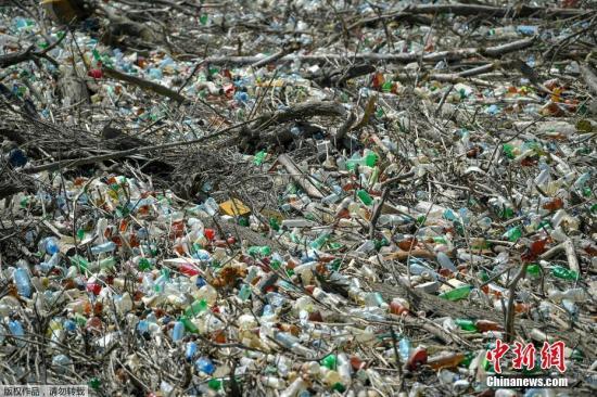 資料圖:近日,匈牙利Kiskore ,由于當地的梯沙(Tisza)河水位上升,數噸的浮木夾雜著塑料廢棄物漂浮在當地水電站的水域上。