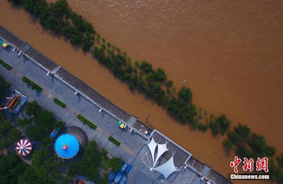 航拍赣江南昌段水位逼近警戒线 沿江树木受淹。刘占昆 摄