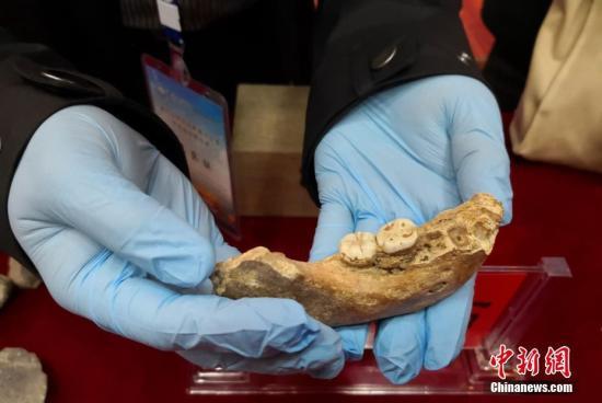 """中国科学院院士陈发虎带领的兰州大学环境考古团队近日在一次会议上最新公布,夏河丹尼索瓦人发现地——甘肃省甘南州夏河县白石崖溶洞保存有丰富的旧石器文化遗存,包括大量石器和动物骨骼化石,初步测年结果显示,该遗址上部文化层至少形成于距今4万年,下部地层年龄正在测试中,该遗址确定为青藏高原目前已知的最早考古遗址。6月14日至16日,由中国科学院青藏高原研究所和兰州大学主办的""""夏河人研究成果推介会暨专家咨询研讨会""""在甘肃夏河召开,兰州大学资源环境学院副教授张东菊代表研究团队在会上发布了以上研究成果。夏河丹尼索瓦人化石目前是除阿尔泰山地区丹尼索瓦洞以外发现的首例丹尼索瓦人化石,将史前人类在青藏高原活动的..."""