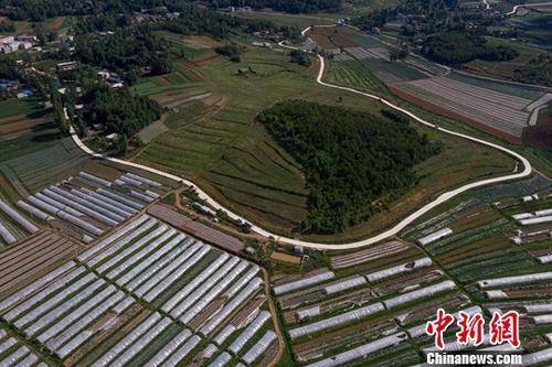 中央农村工作会议:加大农村基础设施建设力度
