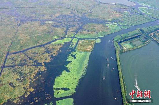 河北累计向白洋淀补水超3亿立方米 有效改善了白洋淀水生态环境