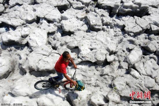 當地時間2019年6月30日,墨西哥哈利斯科州瓜達拉哈拉遭冰雹襲擊,路面堆積厚厚的冰雹,造成車輛被埋房屋受損。