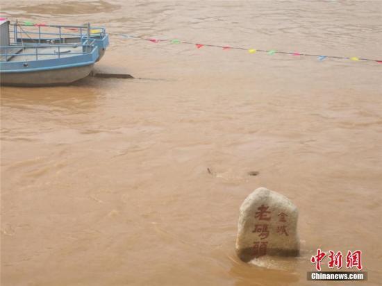 图为正值汛期的黄河。史静静 摄