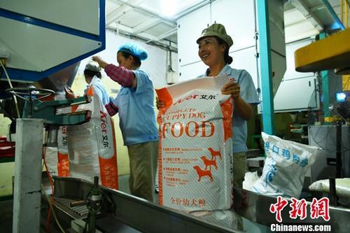 材料图:7月3日,河北邢台北战县一家辱物食物企业,工人正正在繁忙。a target='_blank' href='http://www.chinanews.com/'种孤社/a记者 荡筐佳 摄
