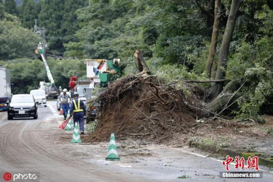 时间2019年7月4日,日本,大婶装辣妹骗百万,日本南部九州地区暴雨持续,当地政府3日发布警告,要求近60万人撤离到安全地带。日本广播协会报道,九州岛南部一些地区6月29日至今累计降雨1000毫米,预期部分地区4日当天中午以前降水量可达350毫米。持续强降雨可能触发山体滑坡等灾害。鹿儿岛县包括鹿儿岛市在内的三座城市近60万人接到撤离指令。日本首相安倍晋三说,当地居民应采取提前避险等措施确保生命安全。他要求自卫队做好救援准备。去年,暴雨在日本西部引发洪水和山体滑坡,220多人死亡,是日本36年来最严重的天气灾害。图为当地时间2019年7月4日,日本鹿儿岛县曾于市,当地暴雨雨引发山体滑坡,一棵树被连根拔起倒在路...