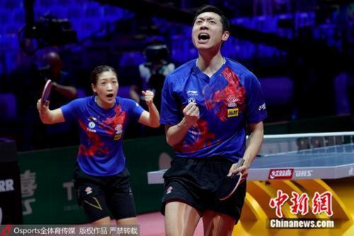 资料图:许昕、刘诗雯庆祝胜利。图片来源:Osports全体育图片社