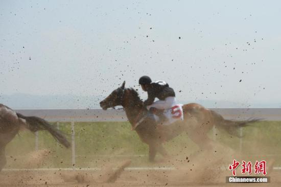 7月12日,速度赛马1000米的比赛进行中。当日,第十一届全国少数民族传统体育运动会马上项目在呼和浩特市开赛。中新社记者 刘文华 摄