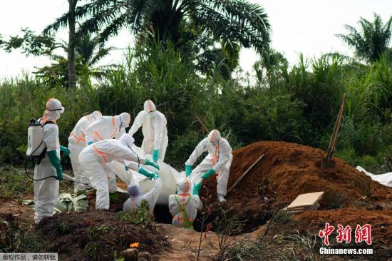 <b>埃博拉有药可解?美科学家发现两种有效药物</b>