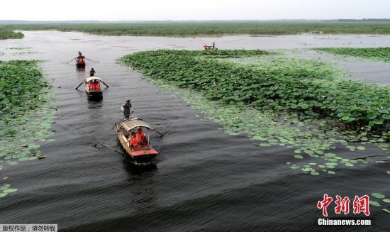 白洋淀流域生态环境监测中心挂牌 推动雄安新区生态文明建设图片