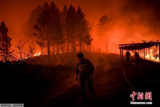 2019年6月,葡萄牙中部的大佩德羅岡山區曾發生嚴重野火,奪走64條人命,250多人受傷。圖為山火蔓延現場。