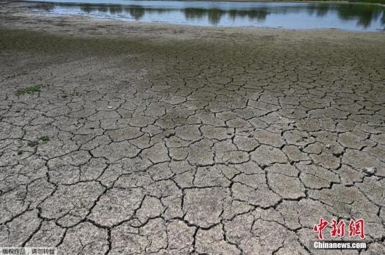 当地时间7月22日,在持续高温的影响下,法国Villars-les-Dombes地区出现池塘干涸土地龟裂的情况。目前,欧洲各地的农民,私人家庭和野生动物正遭受干旱的影响。在法国的一些地区,人们被告知尽量不要洗车和浇水,除了饮用等必要的用水需求外,其他的方面的用水被全面削减。