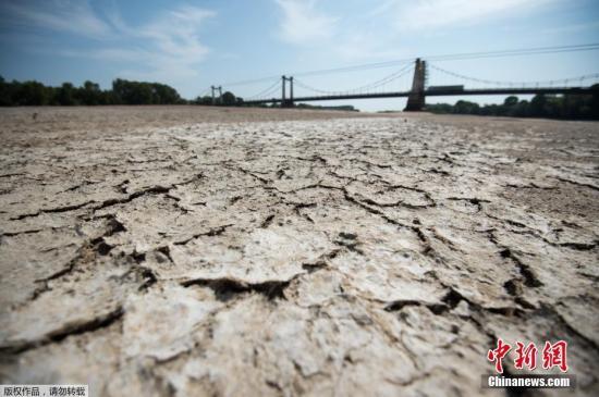 法国今夏出现大规模干旱 逾80多个省受到影响