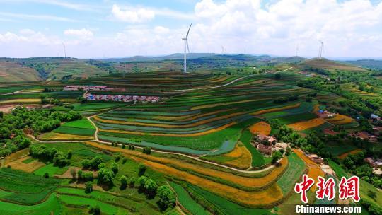 如何确保土地承包长久不变政策落地?农业农村部回应