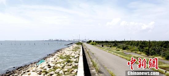 近日,<a target='_blank' href='http://www.chinanews.com/'>中新社</a>记者前往云林县台西乡采访台湾慈心有机农业发展基金会在当地开展的种树专案。超采地下水造成的地层下陷困扰着台湾中南部县市。图为台西乡海堤,右侧地平面低于海平面将近2米,茂密的植被区原来是白色盐分附着的盐化土地,海岸林复育已见成效。<a target='_blank' href='http://www.chinanews.com/'>中新社</a>记者 刘舒凌 摄