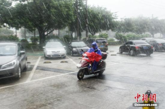 """8月2日,受台风""""韦帕""""的影响,广东南海雨势连续,公众冒雨出止。翟李强 摄"""