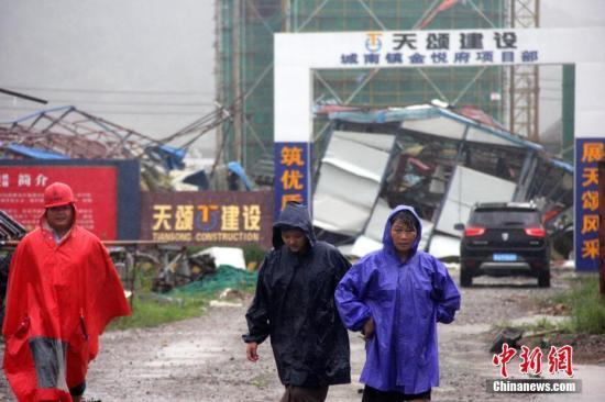 """8月10日,台风""""利奇马""""登陆浙江温岭,一处临时工棚被台风吹塌。/p中新社发 金云国 摄"""