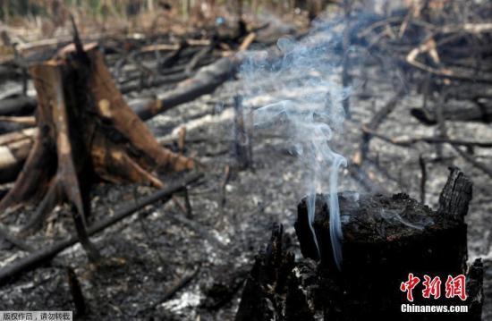 截至当地时间8月21日,亚马孙地区的森林大火已持续燃烧了16天