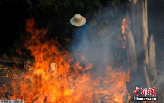 卫星数据:亚马逊雨林火灾频发 2019年来数量增逾8成