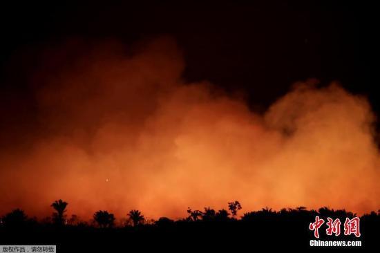 近日,巴西亚马逊州,亚马逊雨林遭遇大火侵袭。卫星数据显示,2019年亚马逊热带雨林火灾数量激增,比2018年同期增加逾8成。