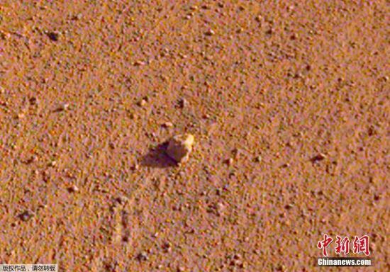 """资料图:火星一岩石被NASA命名""""滚石"""" 约高尔夫球大小。"""