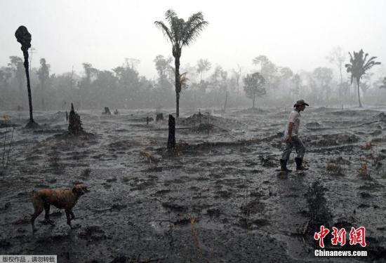 巴西称欢迎资助亚马孙灭火 但要求自主支配援助金