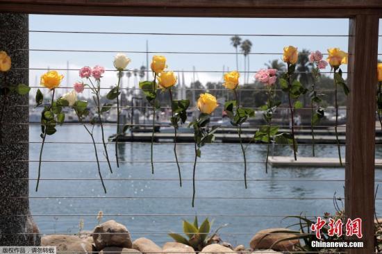 当地时间9月2日,美国加利福利亚,民众将鲜花固定在栏杆上,为潜水船起火事件中遇难和失踪的人们致哀。