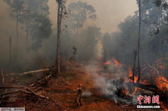 资料图:巴西马托格罗索州南乌尼奥多市,亚马逊森林火灾持续延烧,消防员进行灭火作业。