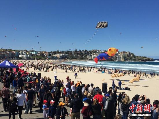 9月8日,澳年夜利亚最年夜的鹞子节正在悉僧邦迪海滩举办,吸收数万人到场。图为市平易近旁观鹞子演出。a target='_blank' href='http://www.chinanews.com/'中新社/a记者 陶社兰 摄