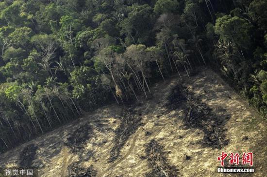 资料图:亚马孙热带雨林。 图片来源:视觉中国