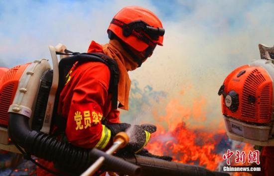 资料图:森林消防员近距离直流喷射灭火作业。 裴海博 摄