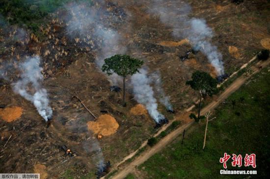 本地工夫2019年9月17日,巴西波多韦柳,亚马孙雨林年夜水连续,浓烟滔滔。