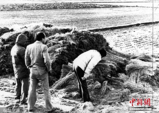 1987年,韩国警方在华城黄溪里的案发现场查看。图片来源:视觉中国