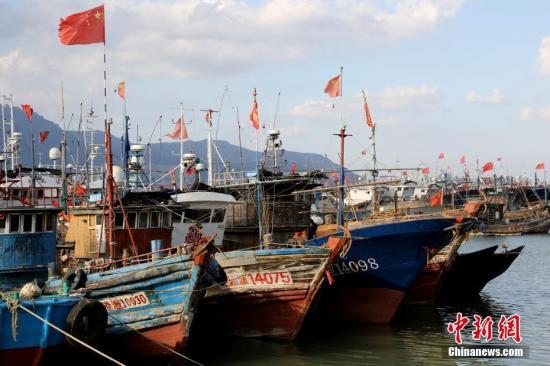 资料图:渔船进港躲避台风。/p中新社发 王春 摄 图片来源:Cnsphoto