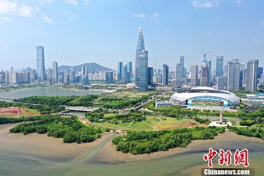 """9月23日,深圳市都会办理战综开法律局对中公布,到本年9月,深圳曾经建成各种公园1090个,包罗天然公园33个、都会公园152个、社区公园905个,完成""""千园之乡""""建立目的。公园绿天办事半径笼盖率达90.87%,成为名不虚传的""""公园里的都会""""。图为深圳湾公园、深圳人材公园。a target='_blank' href='http://www.chinanews.com/'中新社/a记者 陈文 摄"""