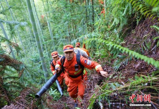 资料图:森林消防员开展林内负重行军。童鹏程 摄