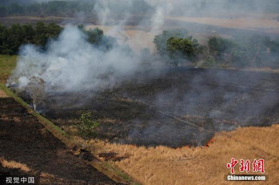 本地工夫2019年9月29日,印度僧西亚减里曼丹省中部Banjarmasin四周,丛林火警后一片焦土。 图片滥觞:视觉中国