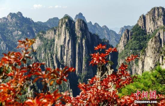 图为黄山光景区下海拔地区的好景。 圆坐华 摄