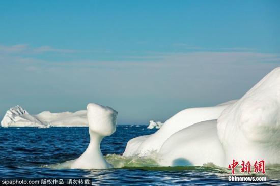 格陵兰岛西海岸,北极圈以北250公里处的迪斯科湾,许多冰山漂进峡湾,并逐渐融化。图片来源:Sipaphoto 版权作品 禁止转载