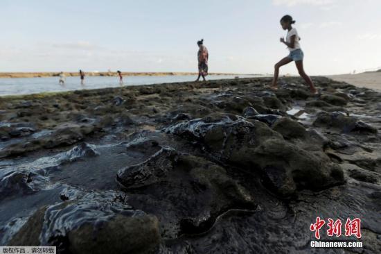 材料图:巴西西南部各州正正在抓紧清算海岸油污。