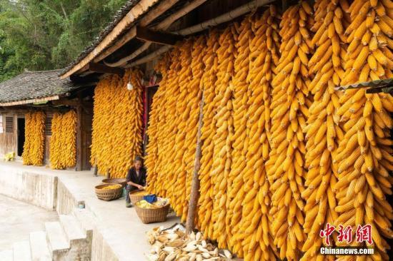 如何保证农民收入增长?农村农业部计划从四点着手