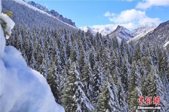 资料图:一场秋雪过后,祁连山银装素裹,雪景如画。 王超 摄