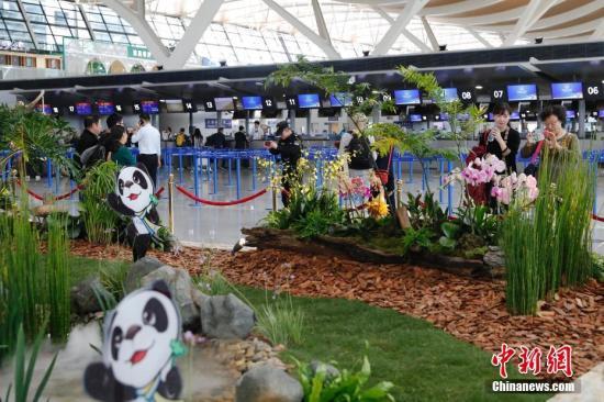 第二届中国国际进口博览会开幕在即,上海迎接八方来宾。<a target='_blank' href='http://www.chinanews.com/'>中新社</a>记者 殷立勤 摄