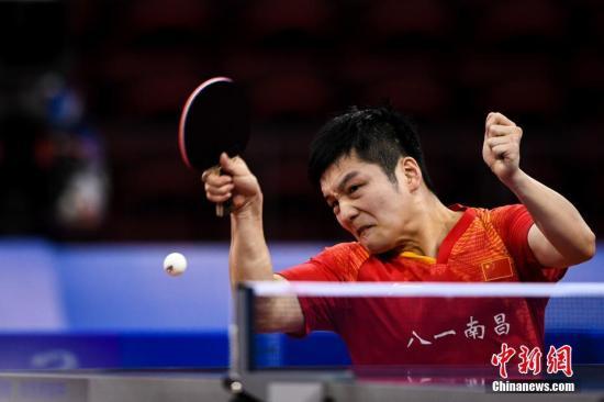 资料图:樊振东在比赛中。 <a target='_blank' href='http://www.chinanews.com/'>中新社</a>记者 何蓬磊 摄